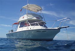 Margarita dive resorts dive shop boat